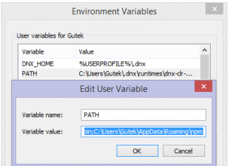 Environment Variables Windows